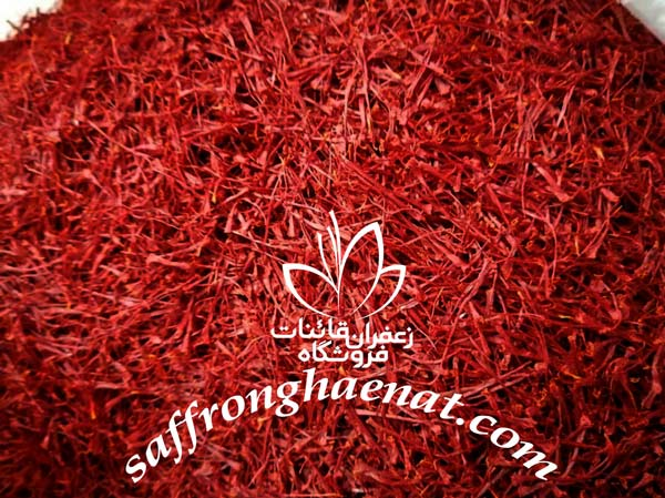 gathering saffron wholesale wholesale saffron suppliers india